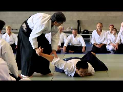 """Zone Theory of Aikido"" by Stanley Pranin"