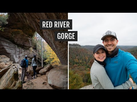 Hiking the Red River Gorge Loop in Kentucky (Gray's Arch + Hanson's Point) + post-hike FOOD!