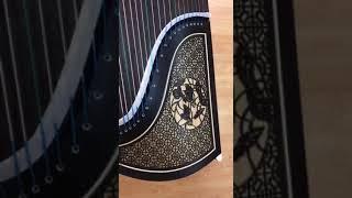 Professional Level Black Sandalwood Guzheng Instrument Chinese Zither Harp