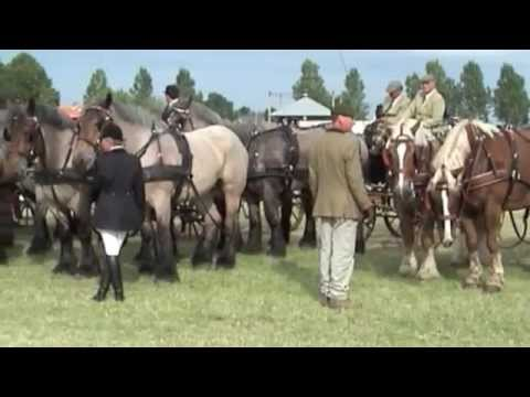 Polder nostalgie en Power Horses in Nagele, 2008