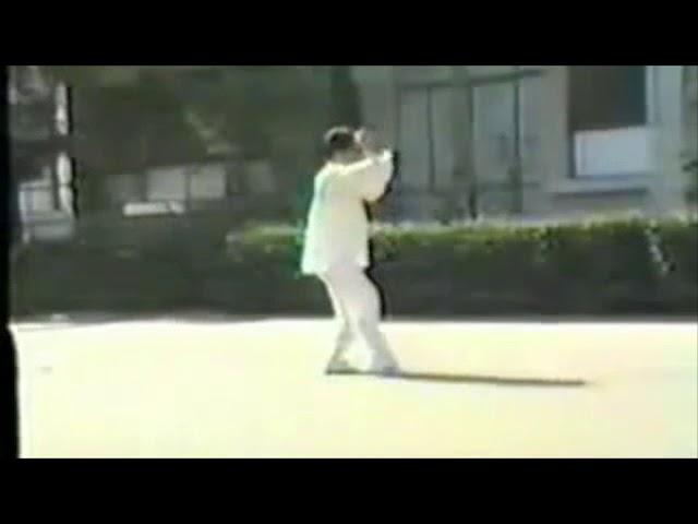 Tai Chi style Chen Laojia Erlu Paochui 1980's - Chen Xiao Wang [陈氏太极拳老架 Taijiquan style Chen]