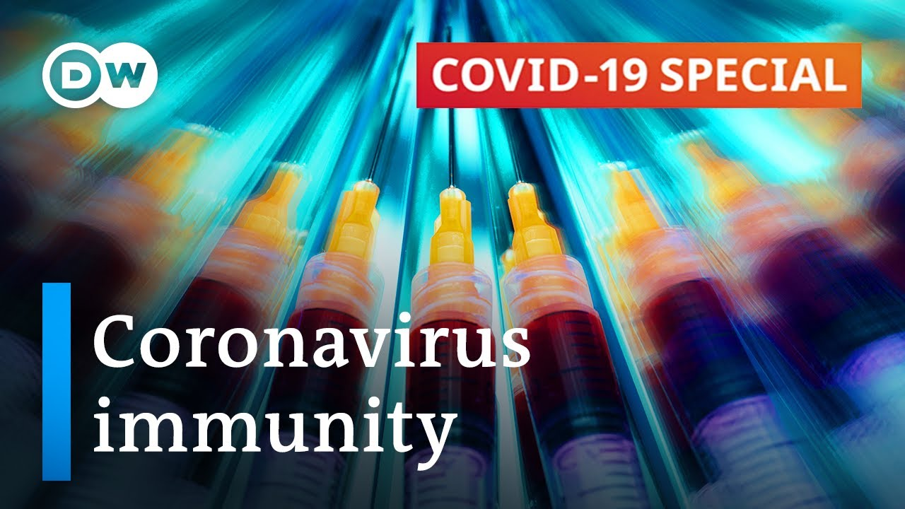 Coronavirus immunity: What do we know? | COVID-19 Special - YouTube