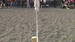 年2回 茅ヶ崎サザンビーチで行われる海のお散歩会。1日限りの特設イタ...