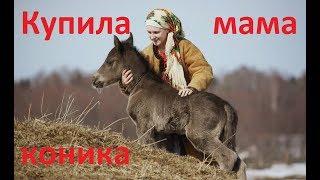 видео Купить детскую большую игрушку лошадку