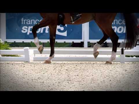 Alltech FEI World Equestrian Games 2014 in Normandy - Highlights