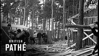 Newfoundland Lumberjacks Here  (1940)