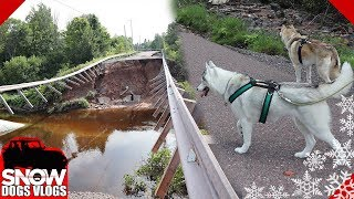 massive-flood-damage-camping-with-dogs
