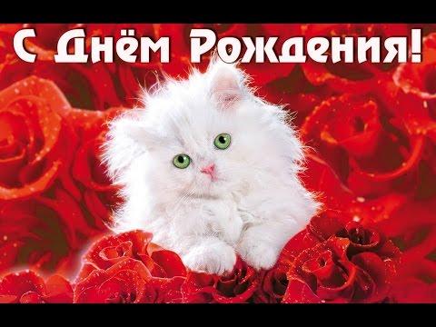 С Днем Рождения, красотка! ♥