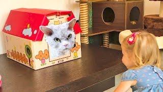 Злые коты пытались напасть на Настю в Кошачьем Кафе Смешные кошки и котята и Скай из Щенячий патруль
