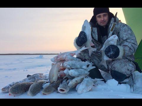 зимняя рыбалка видео - 2016-12-21 07:30:34