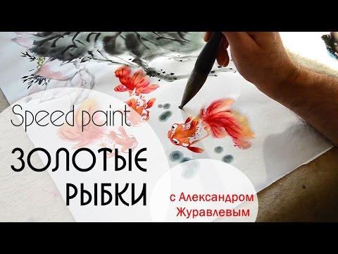 Как рисовать поэтапно. Рисунки карандашом для начинающих