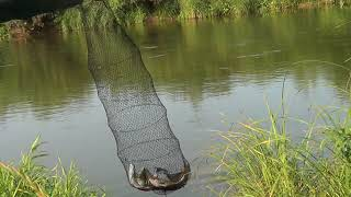 Пермский край река обва рыбалка