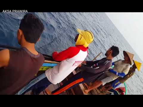 Nelayan pariaman menangkap ikan tongkol