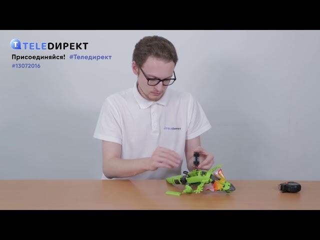 Видеообзор: Домашняя ящерица