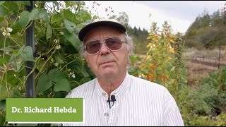 Climate Change & Gardening