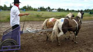 Murillo Fair Chariot Racing 2009