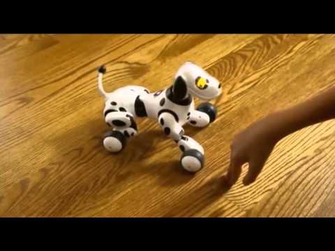 Интерактивные игрушки в виде животных  купить мягкую