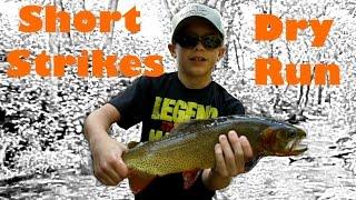 Fly Fishing the Ozarks Short Strikes, Dry Run