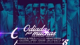 Pacho y Cirilo Ft.Kendo,Daddy Yankee,J Alvarez,De La Ghetto - Odiadas Por Muchas (Official Remix)