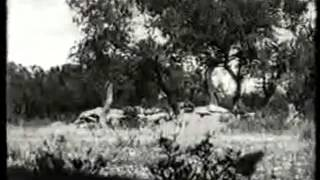 La conquista de Carrascal de Chimillas (1936)