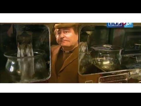 Kaz Makłowiczane - All Day Everyday