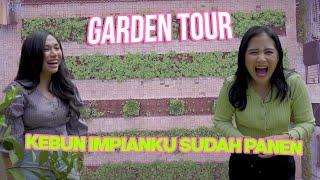 Download lagu Garden Tour Gak Usah Repot Kepasar Sayuran Dirumahku Lagi Panen Diary Prilly