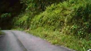 和歌山県道25号で見つけた悪路:その3(最終)