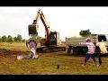 恐ろしい! 2人の勇敢な男の子が地面を掘っている間にトラックとショベルの近くで大きなコブラのヘビをキャ�