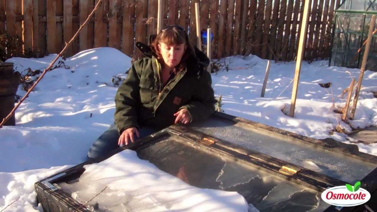 winter gardening with heated cold frames and floating row covers