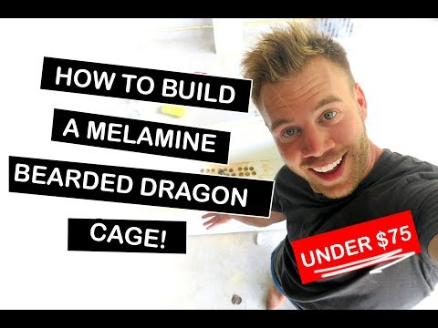 How To Build a Melamine Bearded Dragon Cage For Reptiles 2018