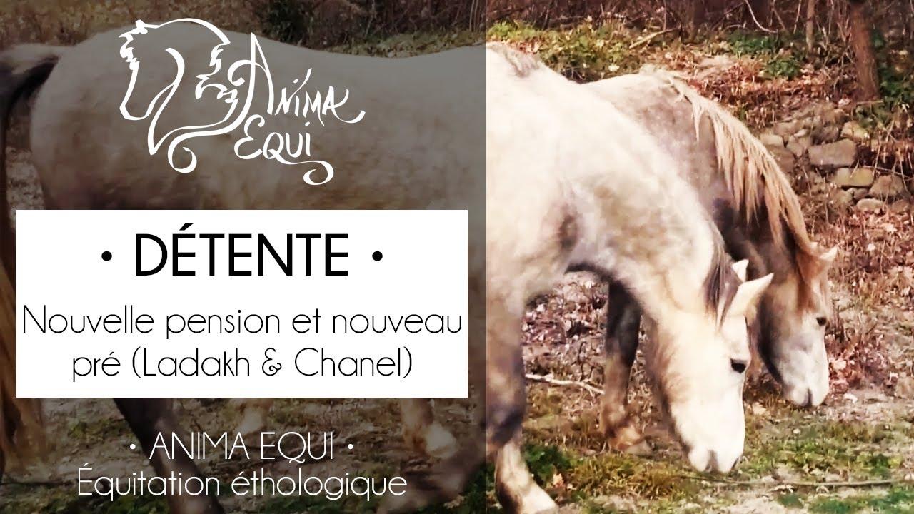 45a96ff0ecaae PRATIQUE • Ladakh   Chanel   Nouvelle pension - YouTube