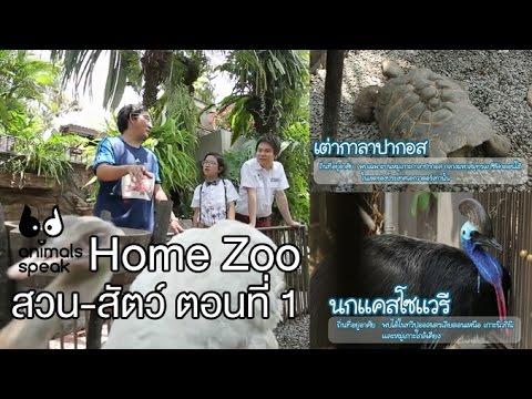 Animals Speak [by Mahidol] Home Zoo สวน - สัตว์ ตอนที่ 1