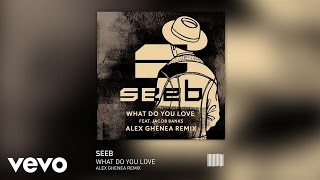 Seeb - What Do You Love (Alex Ghanea Remix) ft. Jacob Banks