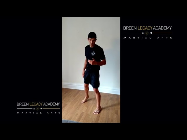 Shadow Boxing: Beyond basics -Building your combinations (add ons)