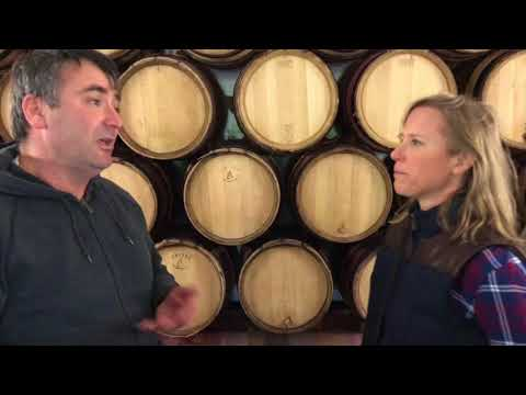 Organic Wine Makers in France