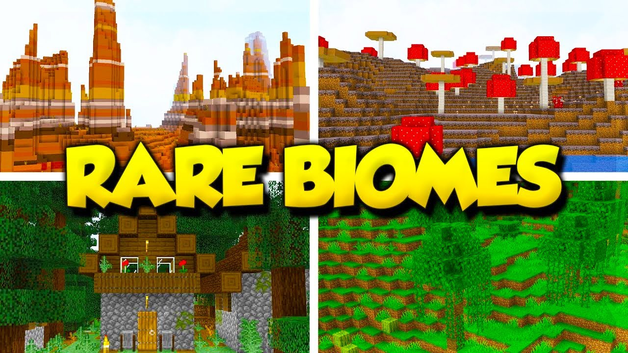 Top 8 Best RARE BIOME Seeds for Minecraft 8.88.8! (Minecraft Java Edition  Seeds)