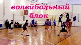 видео Основы постановки блока в волейболе