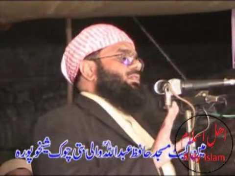 hafiz-abdul-basit-sheikhupuri-2017