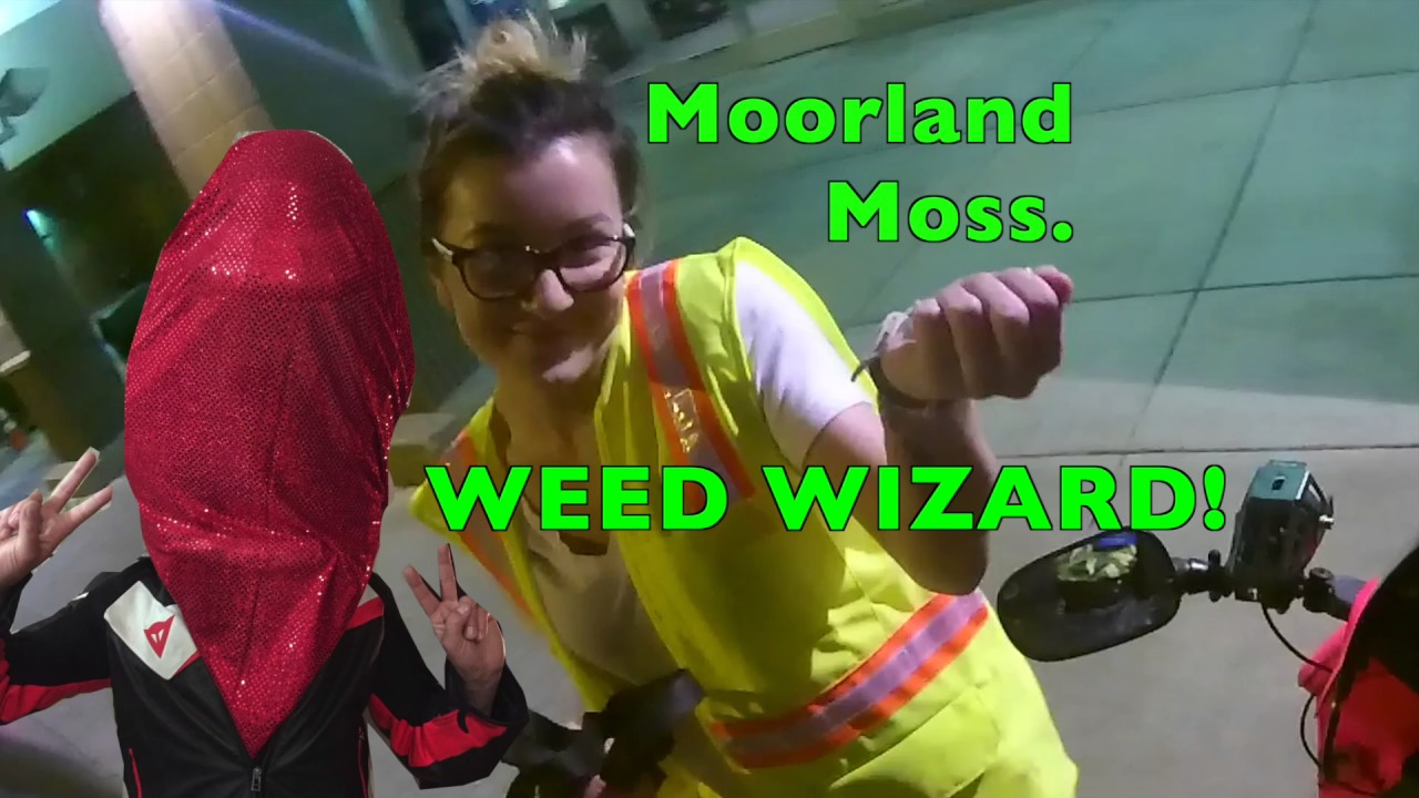 Giving weed to a hot girl SUBSCRIBER. WEED WIZARD 4