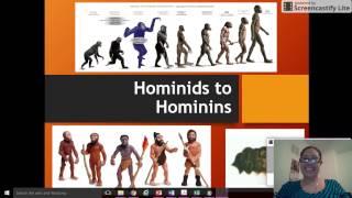 Hominids to Hominins
