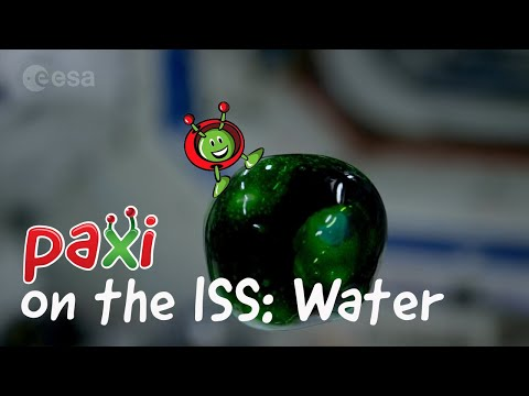 Paxi on the ISS: Recycling air and water
