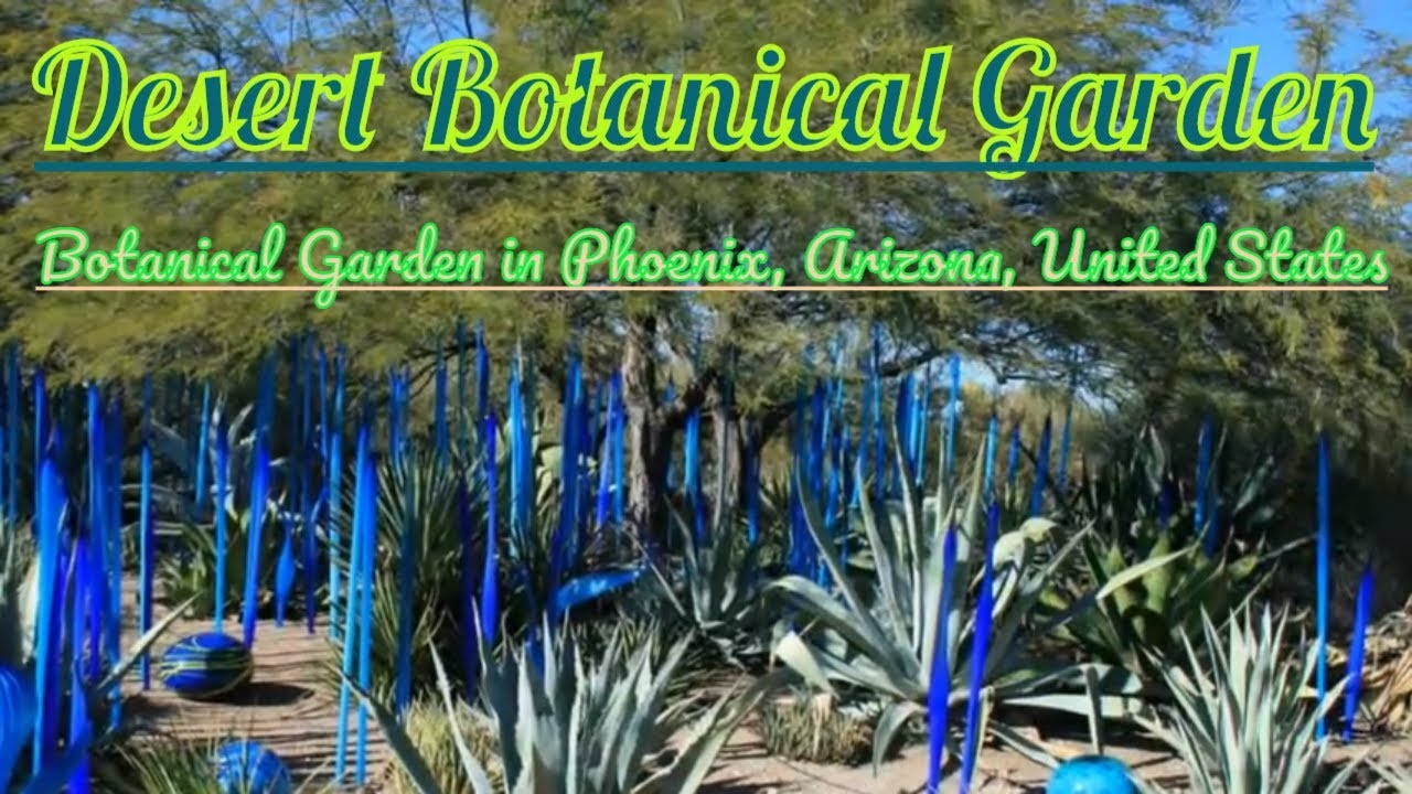 Visiting Desert Botanical Garden, Botanical Garden In Phoenix, Arizona,  United States
