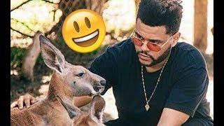 The Weeknd - Funny Moments (Best 2018★)
