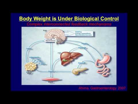 David Ludwig, MD, PhD -- Which Comes First: Overeating or Obesity?