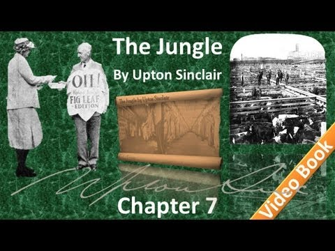 Chapter 07 - The Jungle by Upton Sinclair