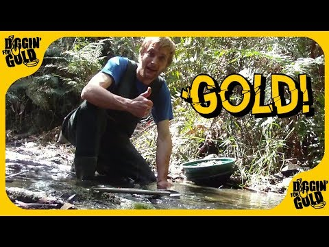 The Ol' Trusty Spot ⛏️ Gippsland Gold Prospecting