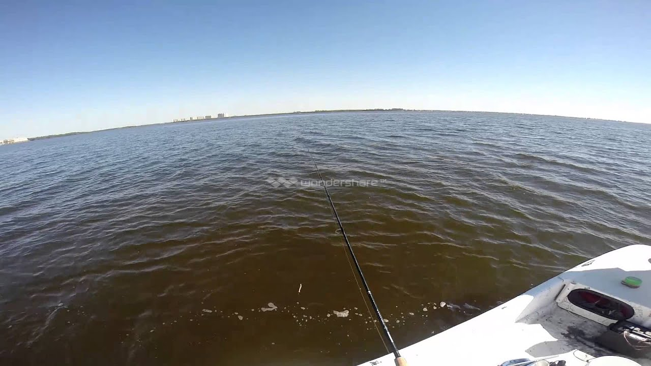 Fishing cape coral florida youtube for Cape coral fishing report