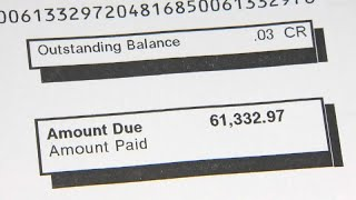 "Woman ""must pay"" €40,000 phone bill"