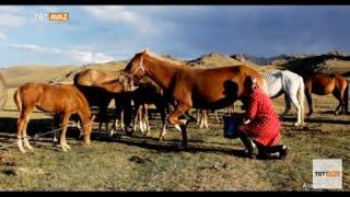 Kırgızistan'ın Muhteşem Doğasını Gezdik - Atayurt - TRT Avaz