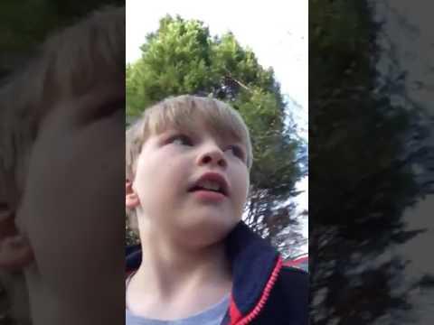 Austin Robards rad video